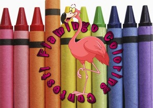 Flamingo Coloring Contest
